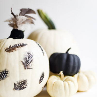 Feather Pumpkin | Place of My Taste | Craft Collector